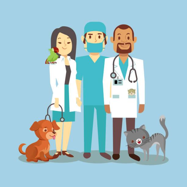 Vétérinaire pour chien et chat