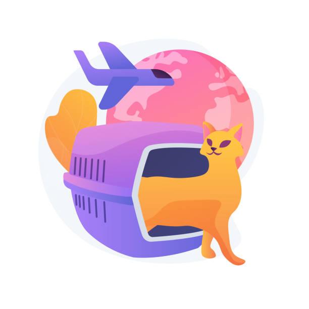 Je prends l'avion avec mon chat